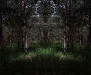 Tomáš Chadim Zona Fotografic gallery