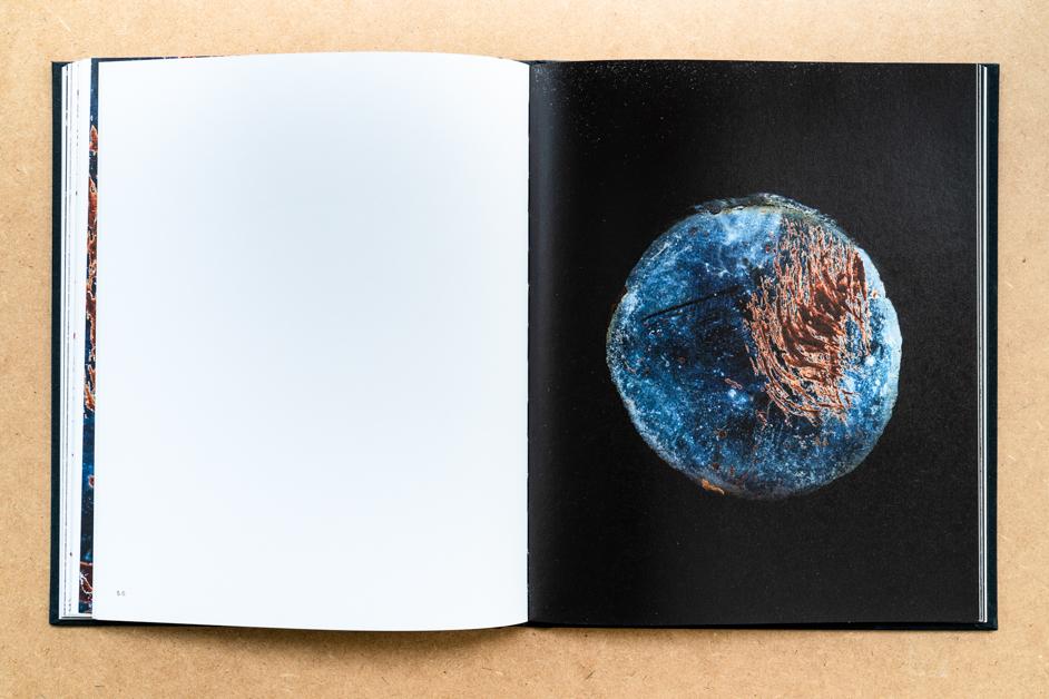 Surveillance book by Valentyn Odnoviun in Fotografic - cover photo