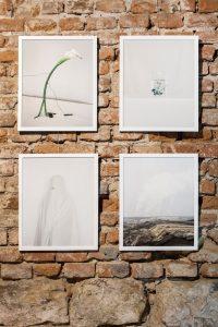 installation documentation Different Worlds exhibition